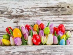 Velikonoční wellness pobyt Trenčianske Teplice