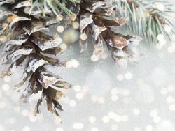 Vianočný wellness pobyt s masážou Terchová