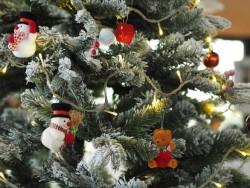Vianočný balík 2018 (Slávnostná večera + procedúry + bazén) Demänovská Dolina