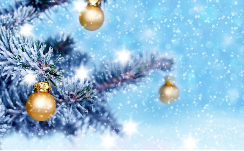 Christmas 2020 in the High Tatras #1