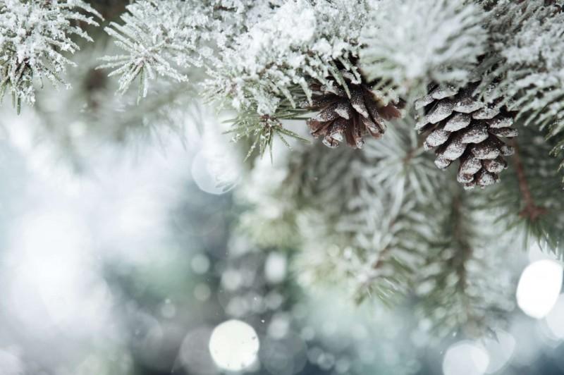 Pravé Tatranské Vianoce #1