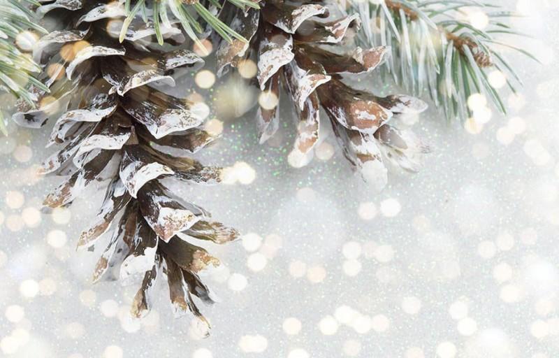 Vianočný wellness pobyt s masážou #1